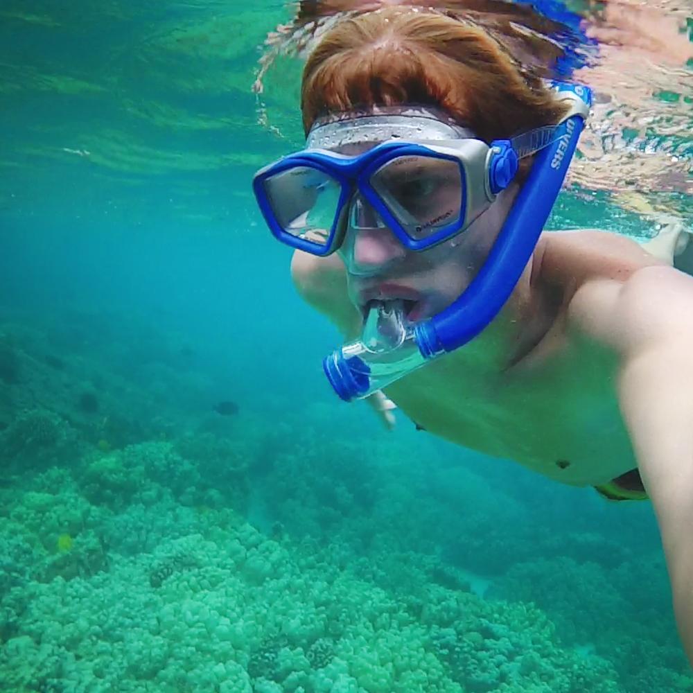 snorkelface.png