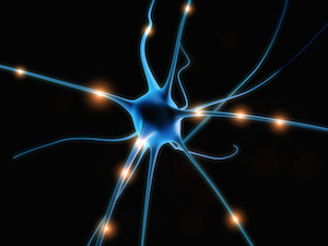 Blue nerve fibers.canstockphoto4458639 copy.jpg