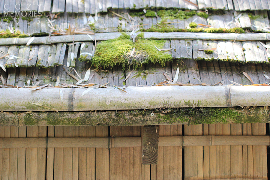 mossy roof of a house made of bamboo