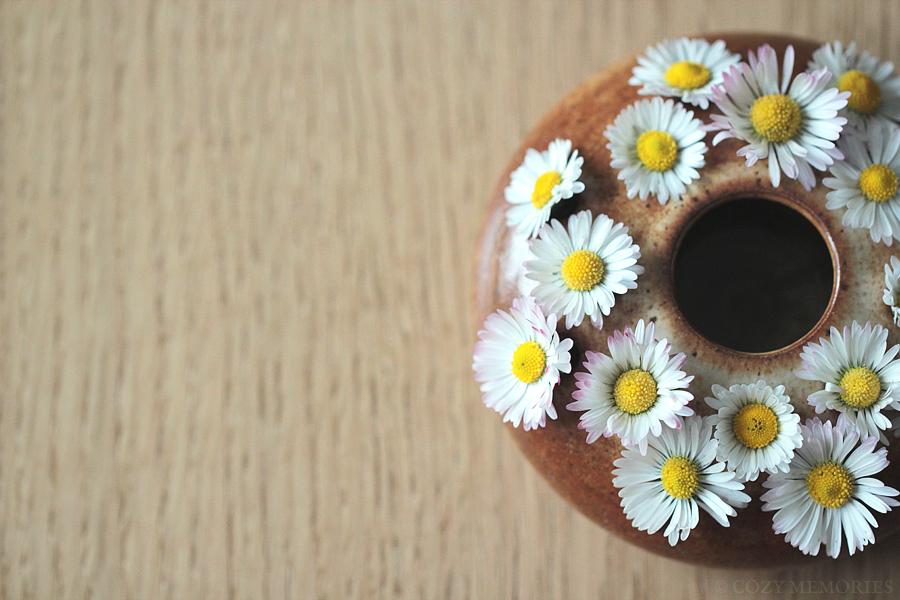 daisy5.jpg