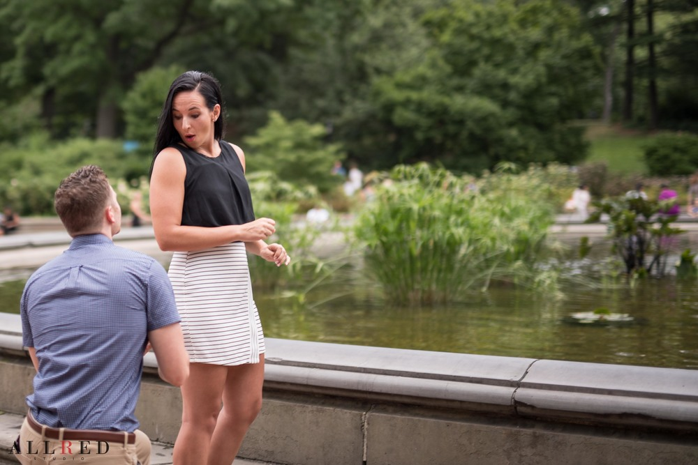 Suprise-Proposal-wedding-new-york-allred-studio-destination-wedding-photographer-new-jersey-hudson-valley-central-park-0154.jpg