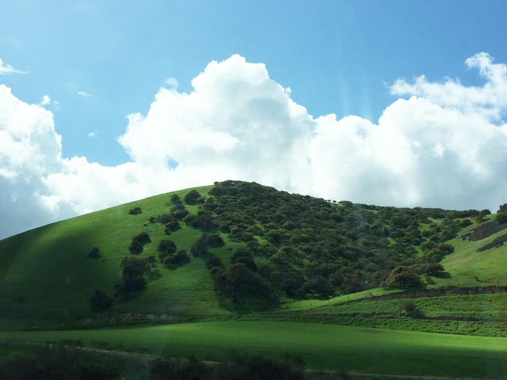 Blue Sky, White Billowing Clouds & Emerald Green Hills, Central California