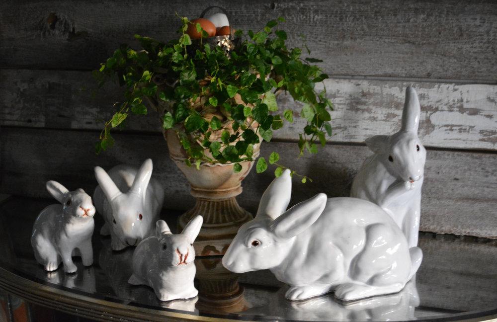 Bavent Rabbits | Easter