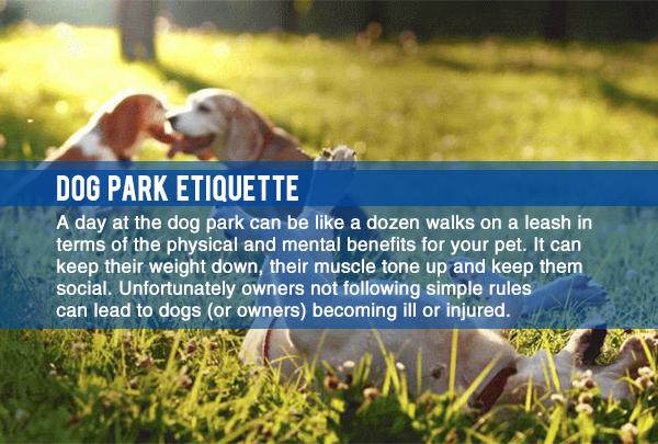 dog_park_etiquette.jpg