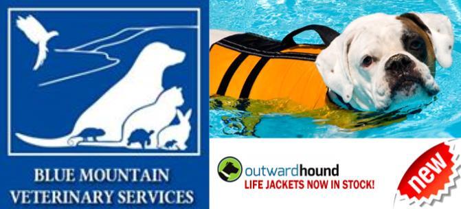 life jackets .jpg
