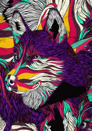 Color Husky, by Danny Ivan