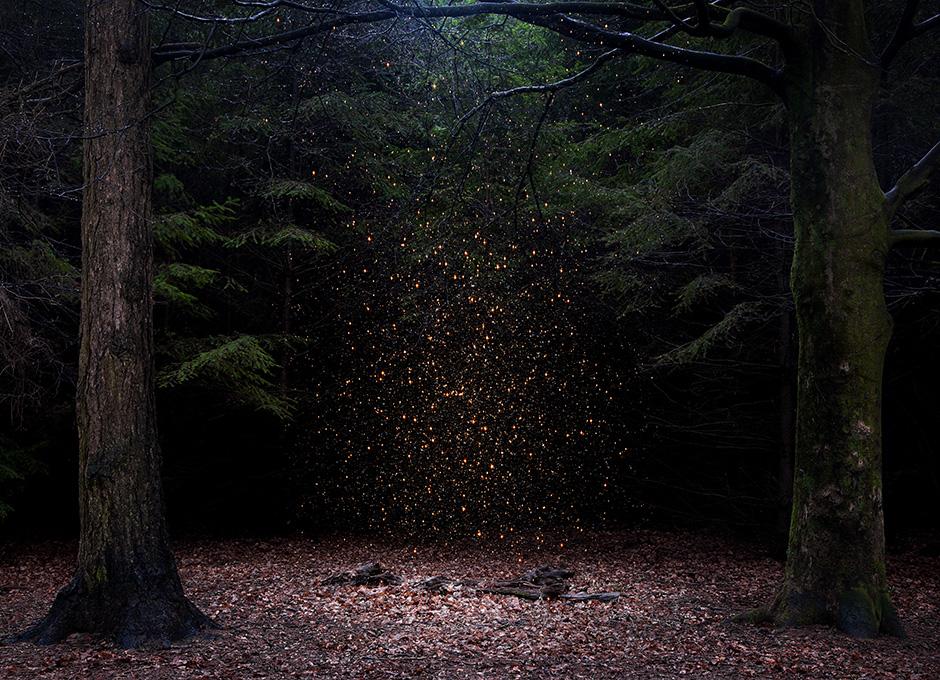 stars01