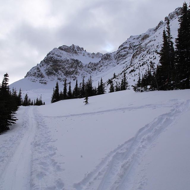 Gear Test Weekend  #yyc  #apparel #apparelinnovation  #alpinetouring  #apparelresearch  #skitouring  #banff  #banffnationalpark