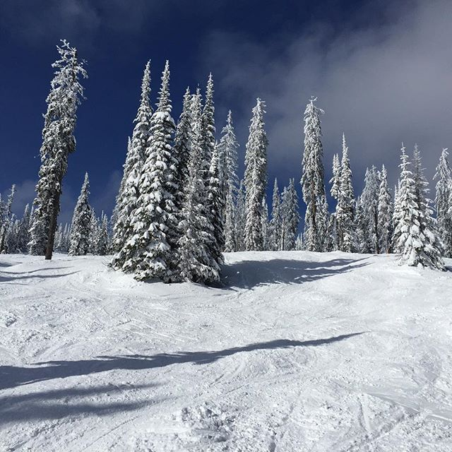 Gear testing in British Columbia. #mountainpeopleunite  @silverstarmymtn