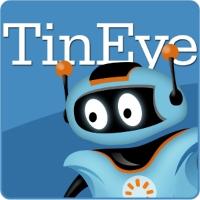 TinEyeLogo_WordMark.jpg