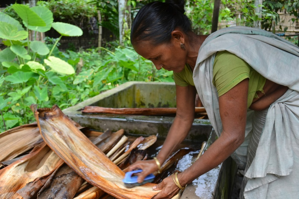 A woman cleans recently collected arecanut leaves to prepare them for pressing.