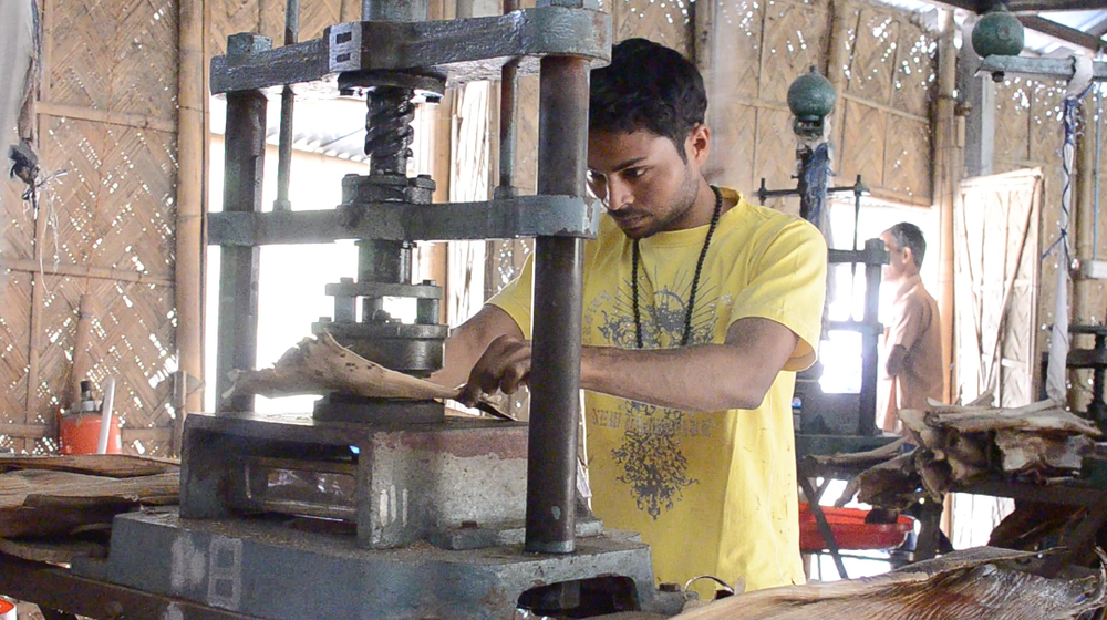 Tanjit (center) prepares an arecanut leaf sheath for pressing on the heated mold.