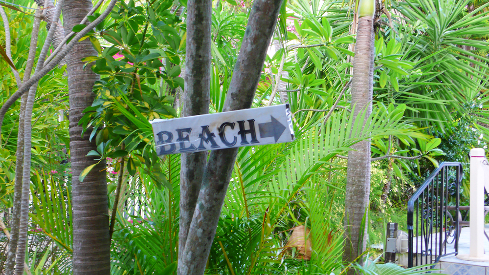 Beach This Way