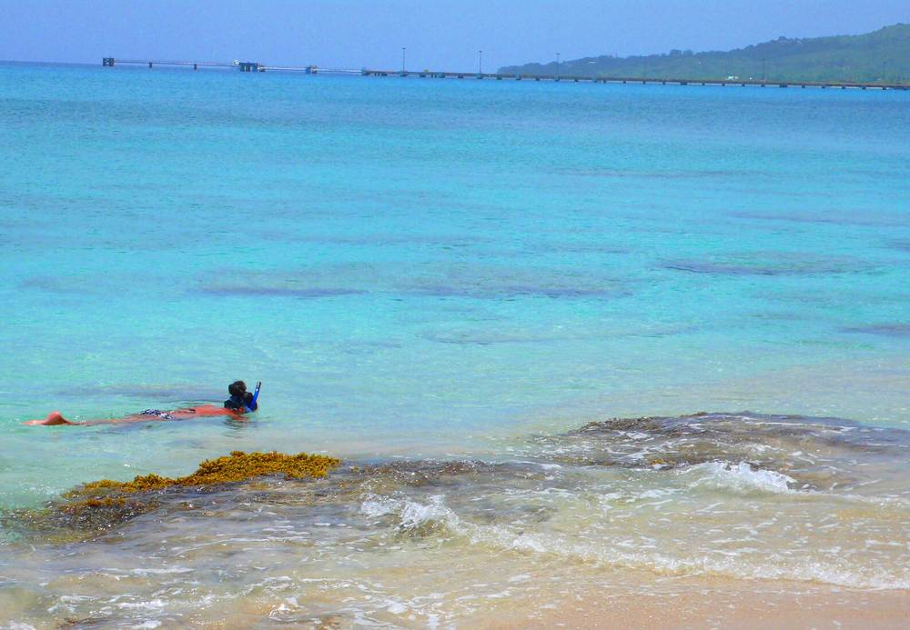 Turquoise Water Snorkel