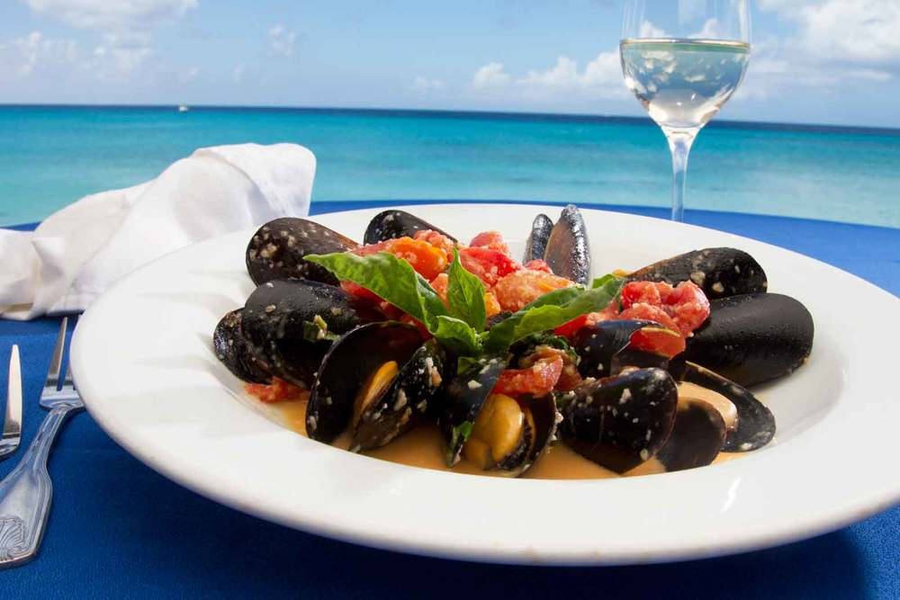 Delicious! Mussels in a light wine and cream sauce to start the evening out perfectly!