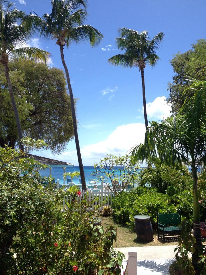 Dolphin Villa Ocean View
