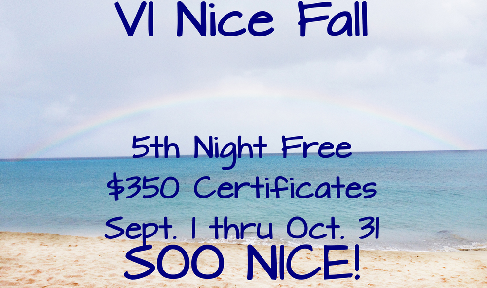 VI Nice Fall Promo