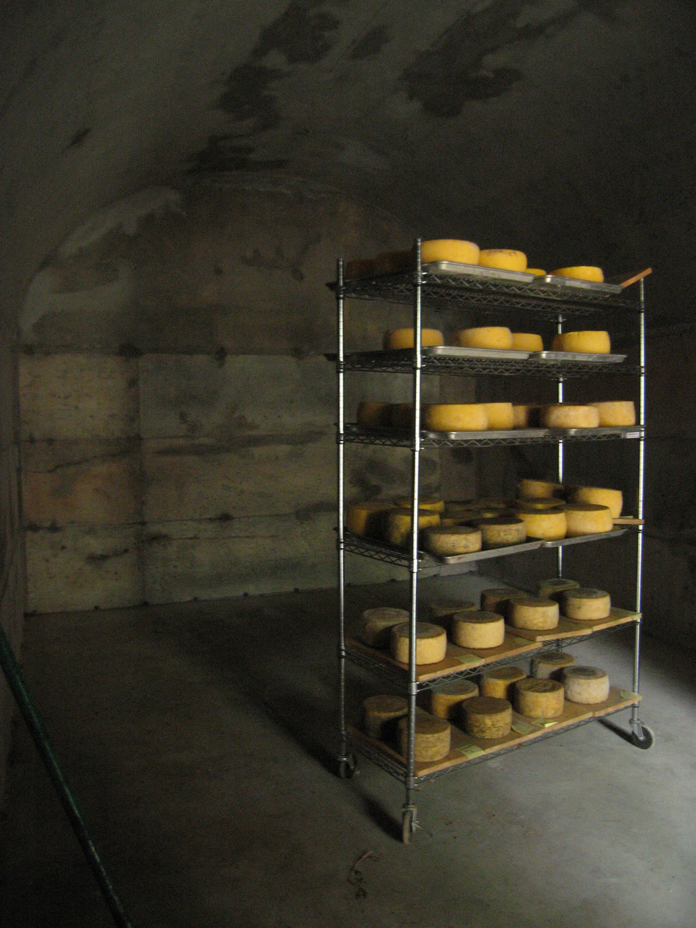 Cheese Cave Interior