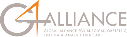 G4 Alliance Logo