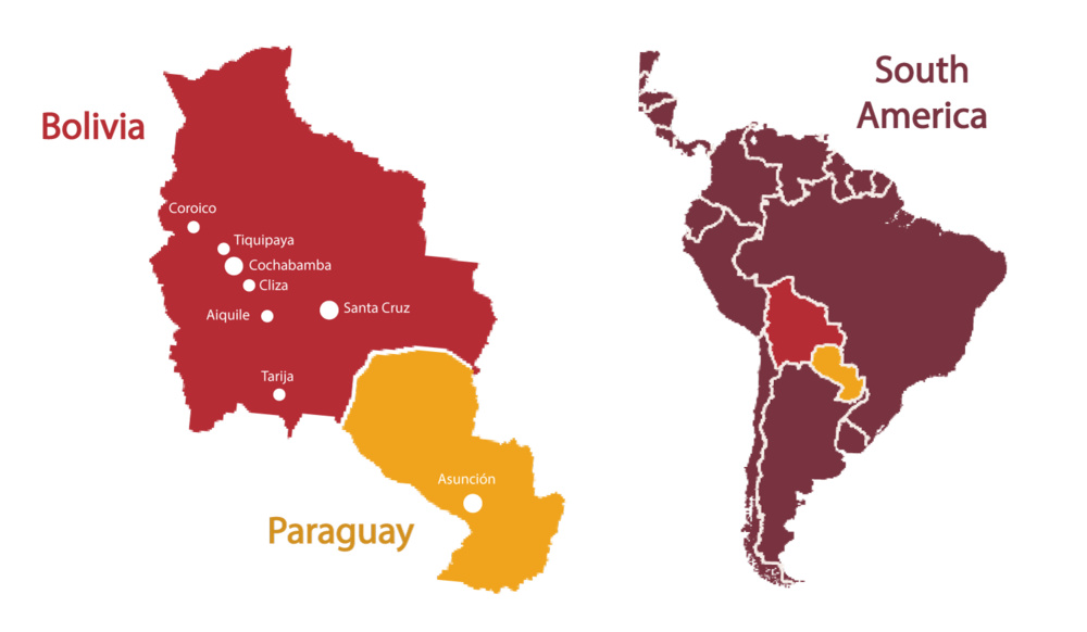 Where We Work - Why does Solidarity Bridge serve Bolivia and Paraguay?