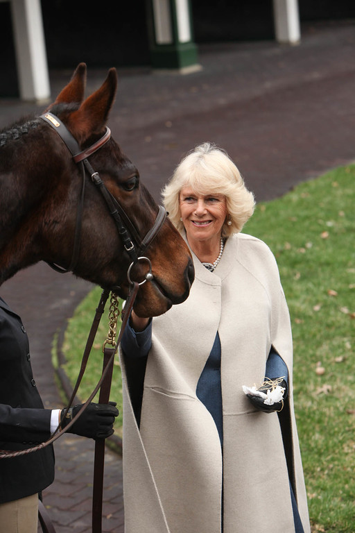 Upon arrival, Her Royal Highness The Duchess of Cornwall was also greeted by retired racehorses from the Secretariat Center at the Kentucky Horse Park during the Brooke USA reception at Churchill Downs.