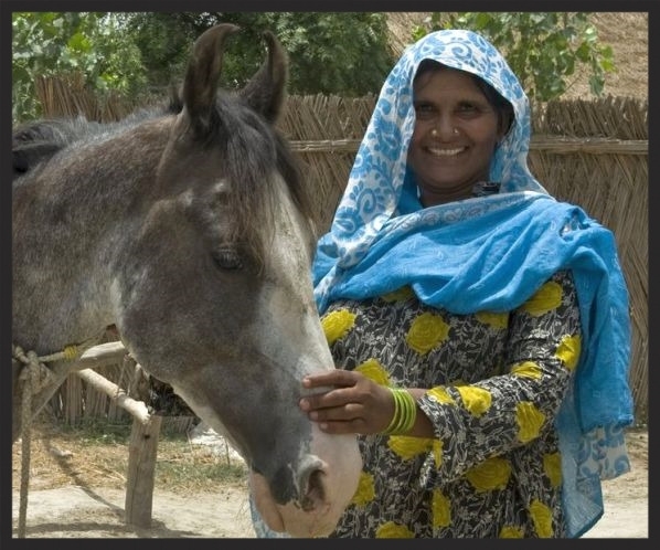 Indian woman with her horse www.BrookeUSA.org.jpg