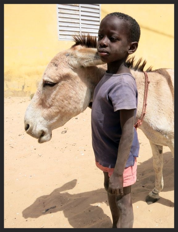 A boy and his donkey in Senegal