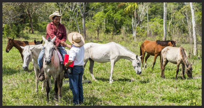 A Brooke veterinarian in Guatemala talks with an equine owner.
