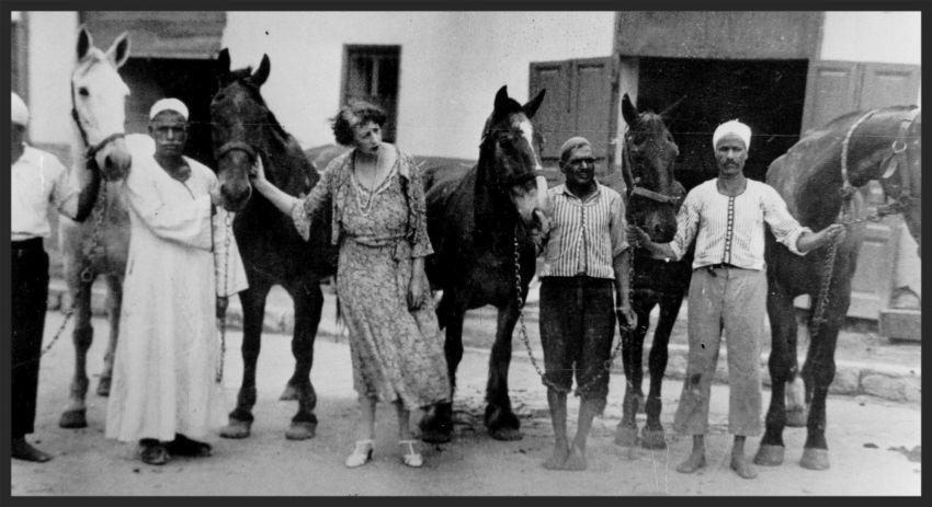 Brooke founder Dorothy Brooke with some rescued war horses in Cairo in the 1930s.  Today one of Dorothy's grandchildren, Ann Searight, actively continues Dorothy's legacy as an Honorary Vice President of the Brooke.