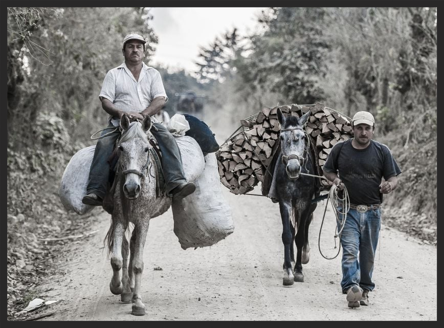Men and their loaded horses on the way to market in Guatemala.