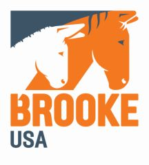 Brooke USA