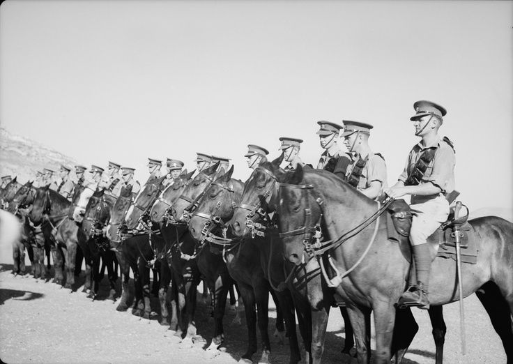 ww1 horses in Palestine campaign.jpg