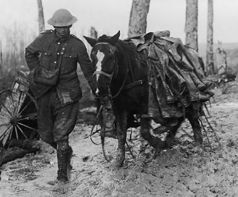 ww1 soldier leading horse small.jpg