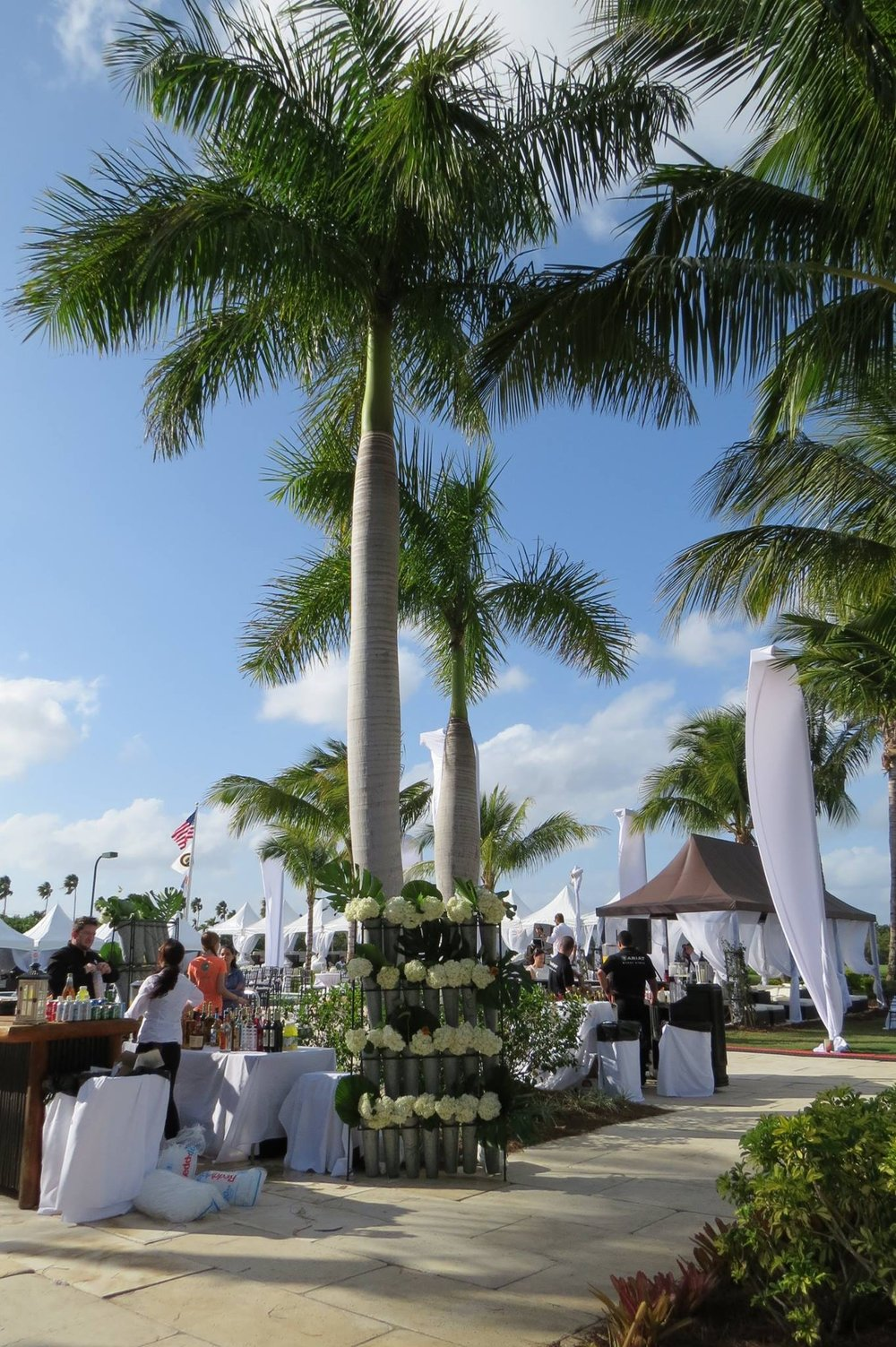 Nic Roldan's 2nd Annual Sunset Polo & White Party by Charlotte Verdon.jpg