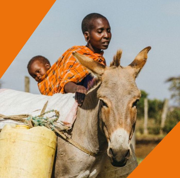 Working equines carry out many household chores, like fetching water and firewood from long distances, so women have more time to spend with their children.