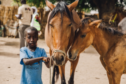 little boy with mare and foal in senegal small.png