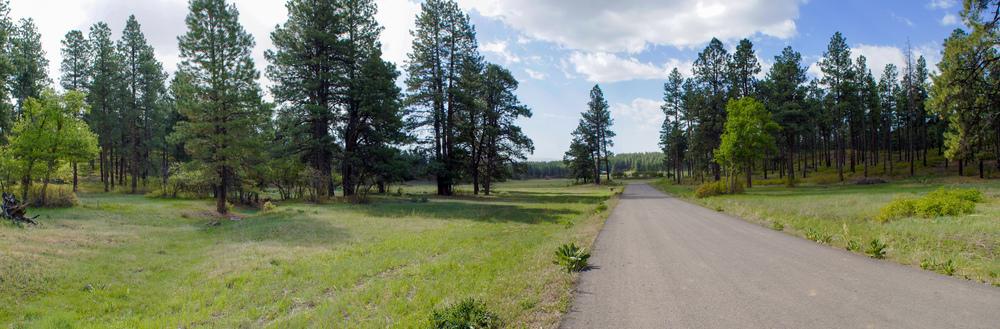 Pano - Eagles Ridge - 2203-09.jpg