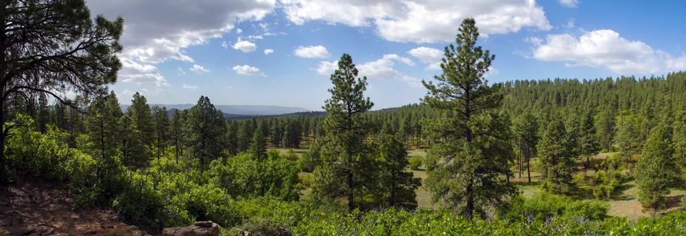 Pano - Eagles Ridge - 2233-39.jpg
