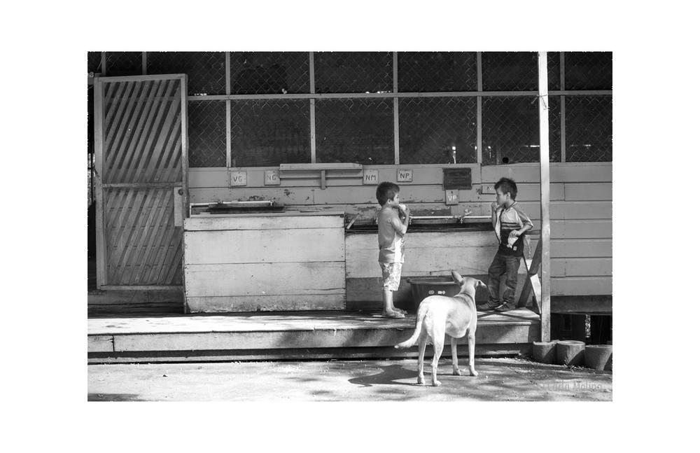 12. Boys with Dog-9244_web.jpg