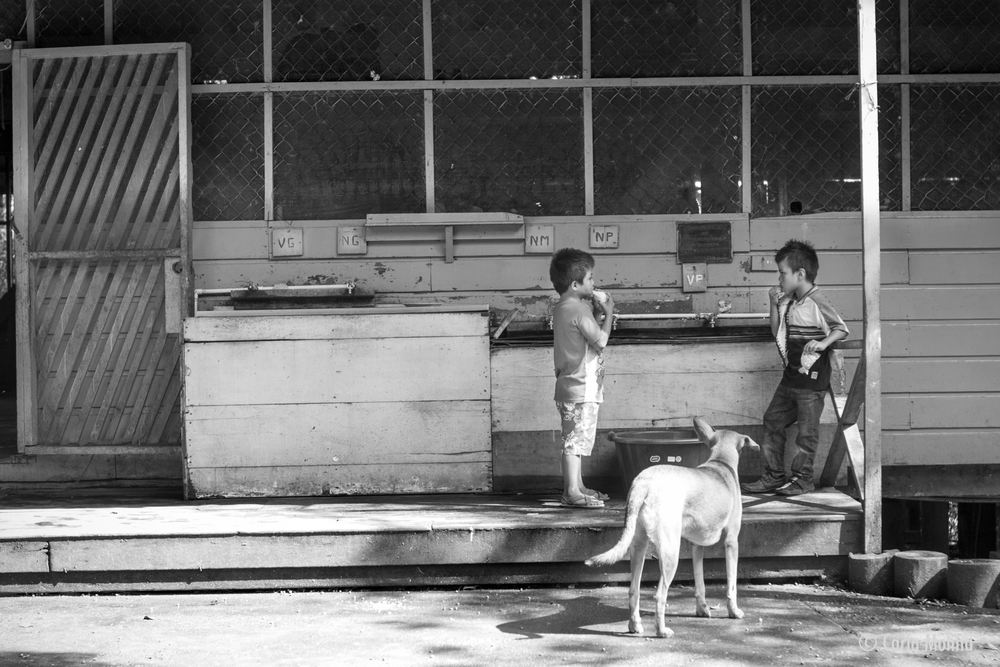 boys by the sinks (Rio Dulce, Guatemala)  With lunch finished, two boys snack on sweets and ponder the afternoon. The dog is a guest who comes by boat occasionally to visit the children. © Carla Molina