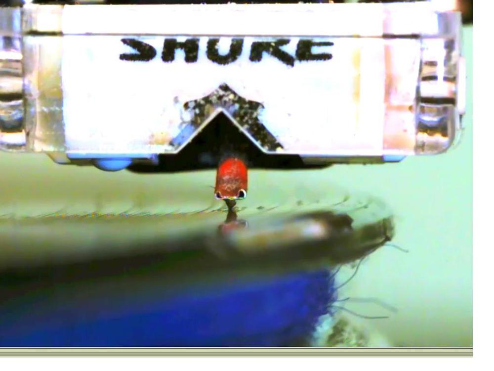 Bright vid - screenshot.JPG