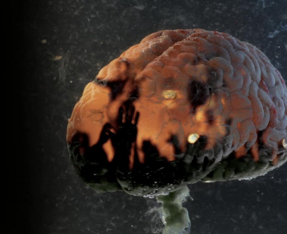bubble brain side.png