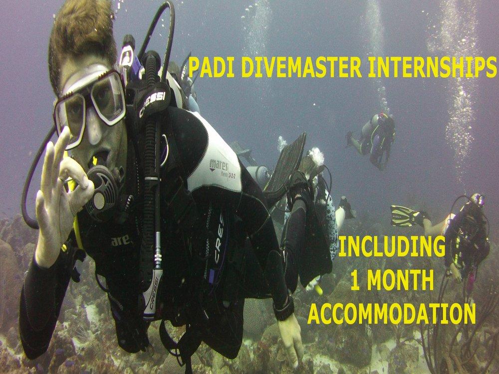PADI Divemaster Internship in Curacao