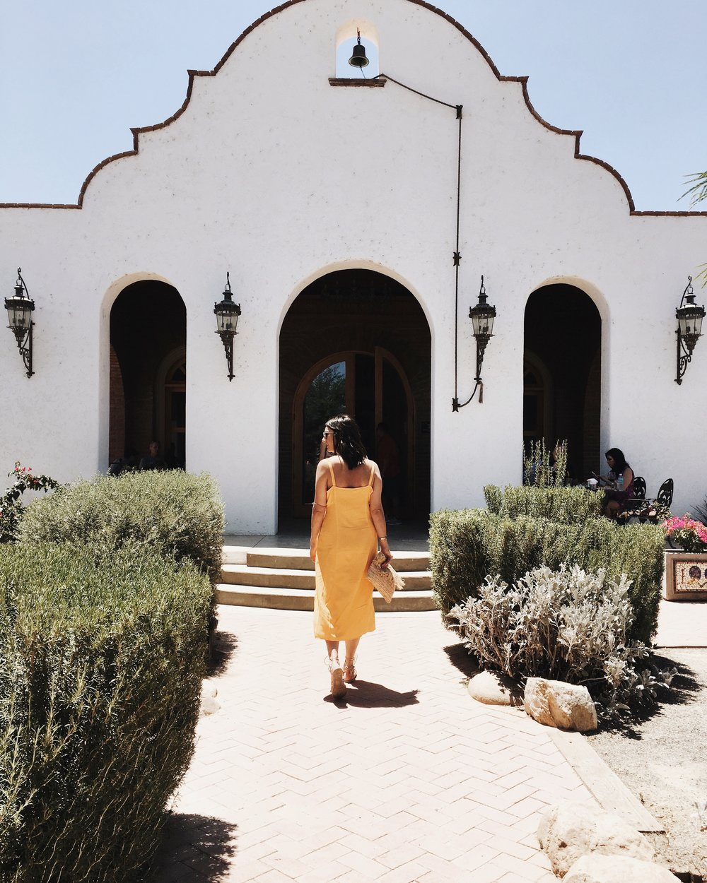 Adobe Guadalupe vineyard