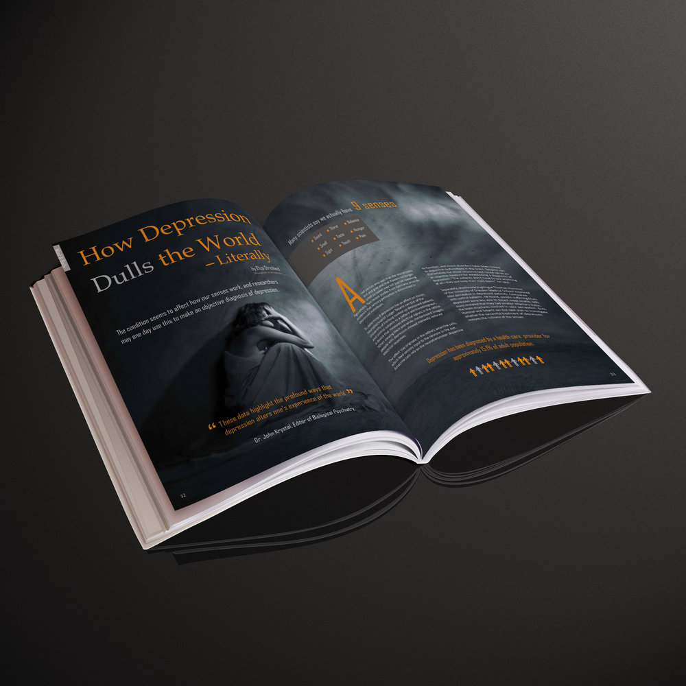 MagazineSpreadMockUp2.jpg