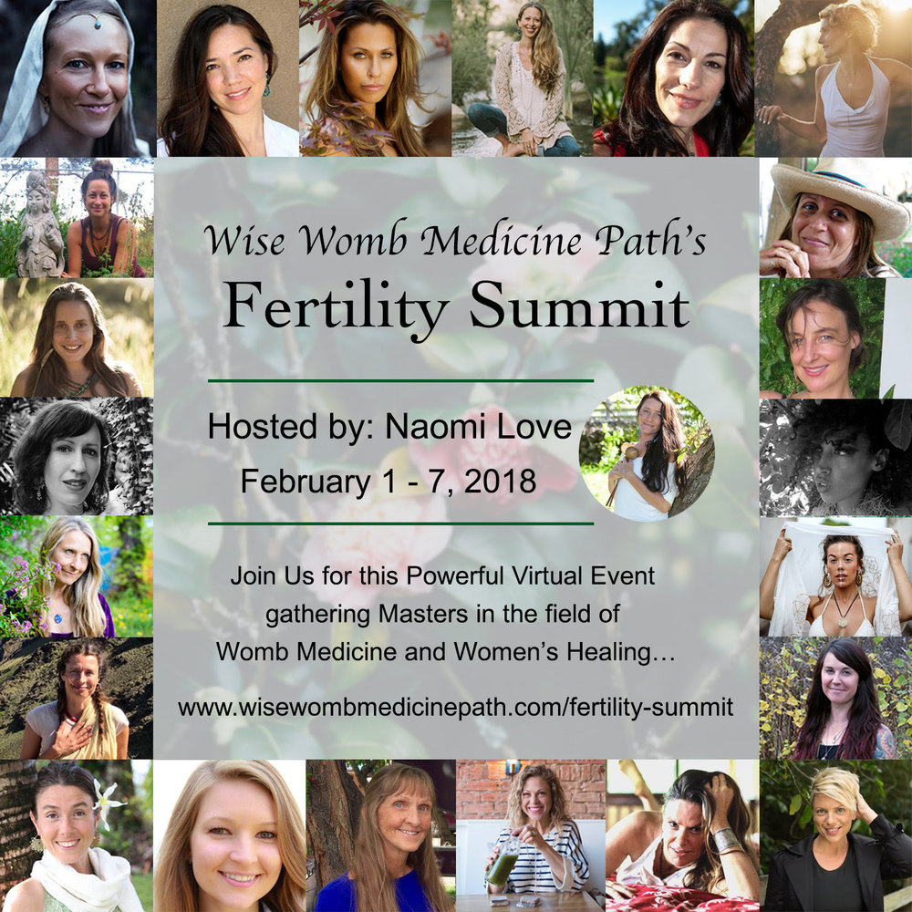 Wise Womb Summit.jpg