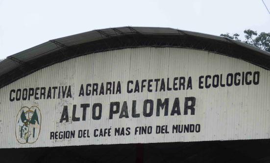 Usda Organic Fair Trade Coffee - Alto Palomar Peru - Arch