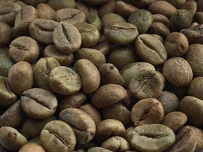 Usda Organic Coffee - Robusta Cherry AB India - Coffee Beans