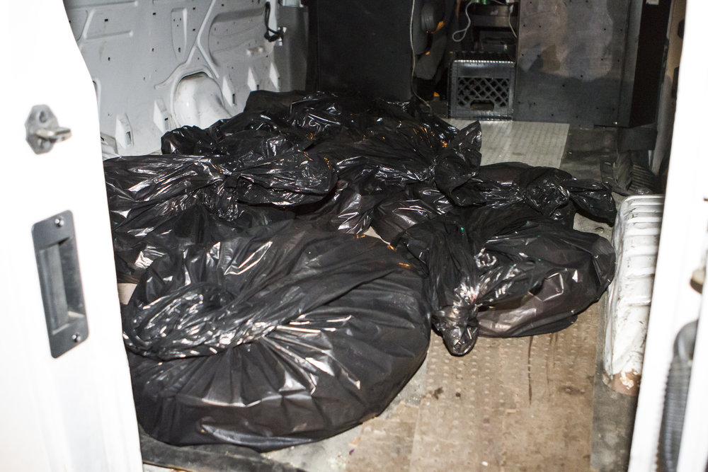 This is where the chickens end up. Their bloody bodies are thrown by the hundreds into plastic bags, which are in turn thrown into a cargo van. This is not a refrigerated food service vehicle and in no sense of the word are these corpses being handled as if they were intended for human consumption.