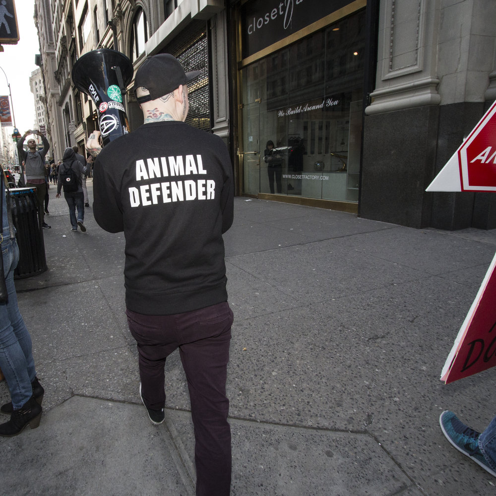 One of the organizers of the march and one of the most passionate animal rights activists in New York City, leads protesters down Fifth Avenue.